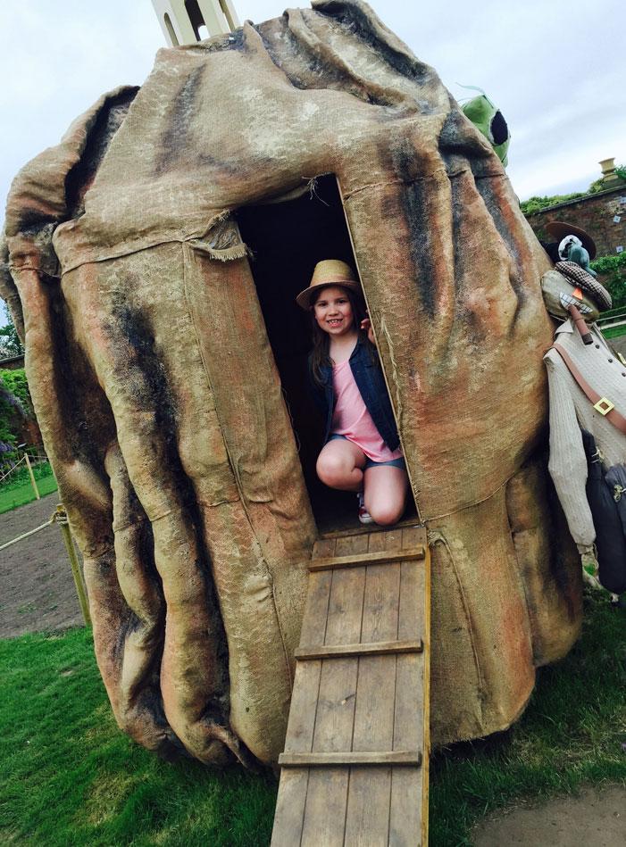 Roald Dahl Adventure: James and The Giant Peach